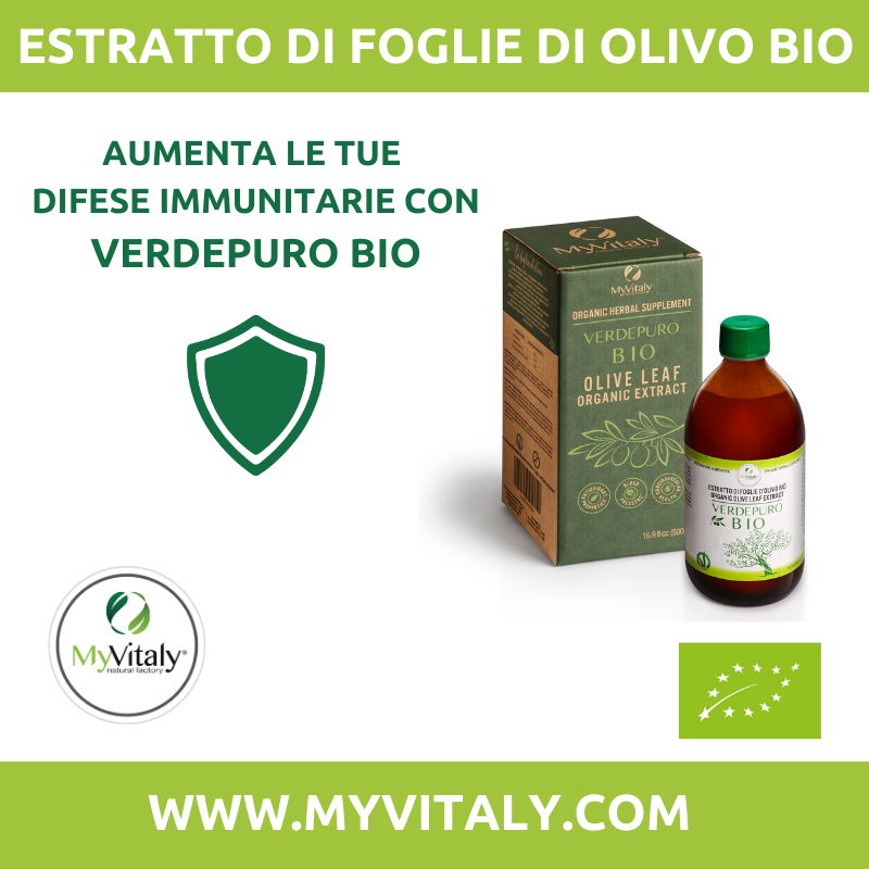 Immunostimolante olivo